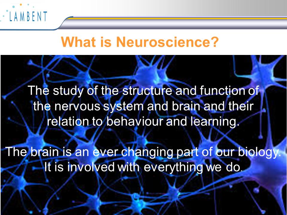 神経科学とは何か