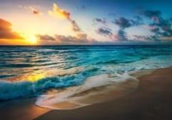 beach-2836300_1280